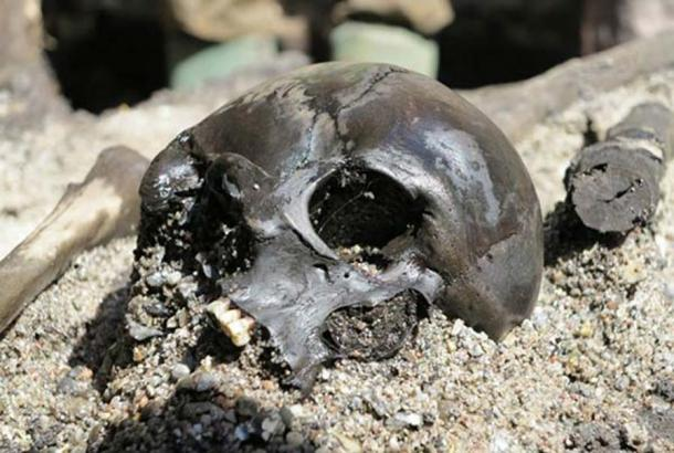 Skulls are scattered around thighbones and joints in the great mass grave at Alken. Image: Skanderborg Museum