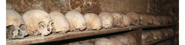 Skulls line shelves at the Charnel House at Rothwell, Northamptonshire. (Image: Holy Trinity Church)