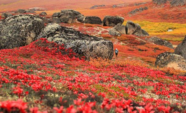 Smooth rocks at Bering Land Bridge National Reserve. (CC BY 2.0)