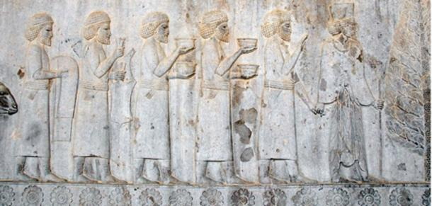 Sogdians on an Achaemenid Persian relief from the Apadana of Persepolis, offering tributary gifts to the Persian king Darius I, 5th century BC.