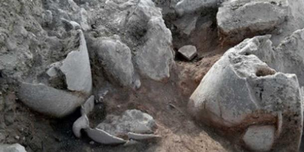 Some of the jugs unearthed at the site of the ancient Jewish city Shiloh. (Credit: Shiloh Association)