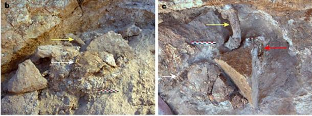 Some of the recent discoveries at Jebel Irhoud, Morocco: b. View showing a partial skull in the center foreground (white arrow) and a femur in the center background (yellow arrow). c. Plan view of b, but after additional excavation. The partial skull (white arrow) and femur (yellow arrow) are still present, as well as a portion of a right tooth row (red arrow).