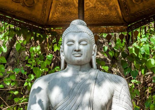 A statue of Buddha at the Buddhist Kelaniya temple in Sri Lanka. (nilanewsom/ Adobe Stock)