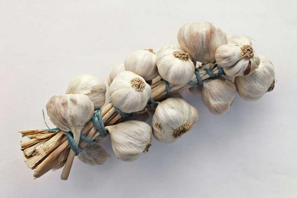 String of garlic, used to protect against vampires.