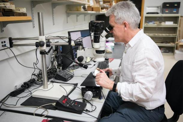 Sturt Manning examining a sample in the Cornell Tree Ring Laboratory. (Image: Chris Kitchen/Cornell University/CC BY-ND )