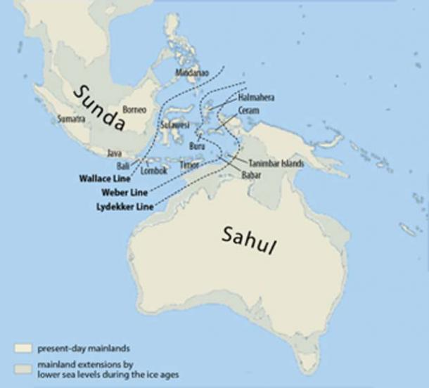 Sundaland is a biogeographical region of Southeastern Asia corresponding to a larger landmass that was exposed throughout the last 2.6 million years during periods when sea levels were lower. (Chumwa / CC BY-SA 3.0)