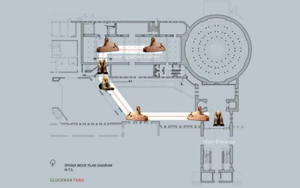 The 76 meter course the sphinx travelled to its new location in the main entrance hall. (Penn Museum)