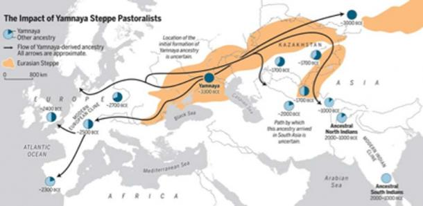 The Bronze Age spread of Yamnaya Steppe pastoralist ancestry into two subcontinents—Europe and South Asia. (Science / Fair Use)