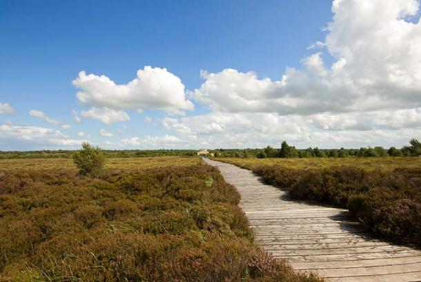 The Corlea Trackway (reconstructed boardwalk) in County Longford, Ireland. (CC BY 2.0)