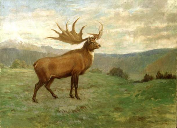 The Irish Elk by Charles R Knight (public domain)