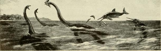 The Loch Ness Monster is described as resembling a Mesozoic marine reptile. (Fæ / Public Domain)