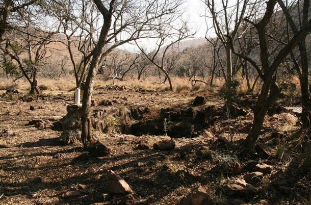 The Malapa site, August 2011 site of discovery of Australopithecus sediba.