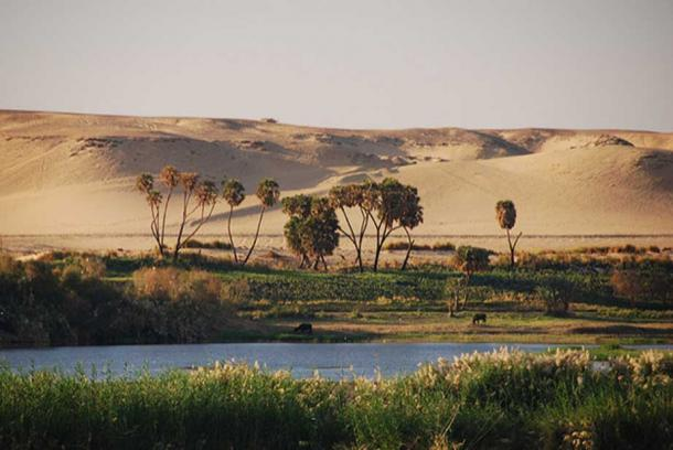 The Nile River in Egypt.