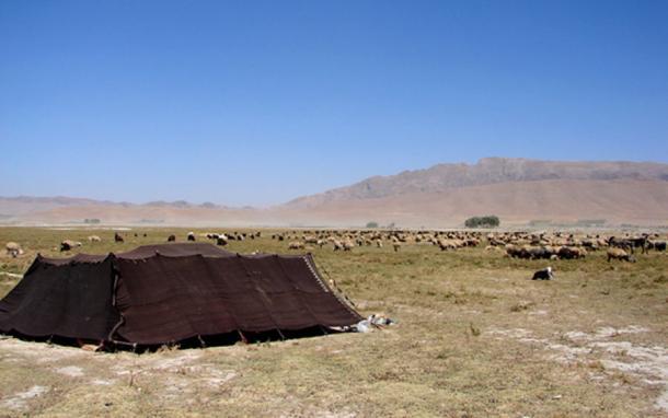 The Yamnaya were pastoral nomads. (Hamed Saber / CC BY-SA 2.0)