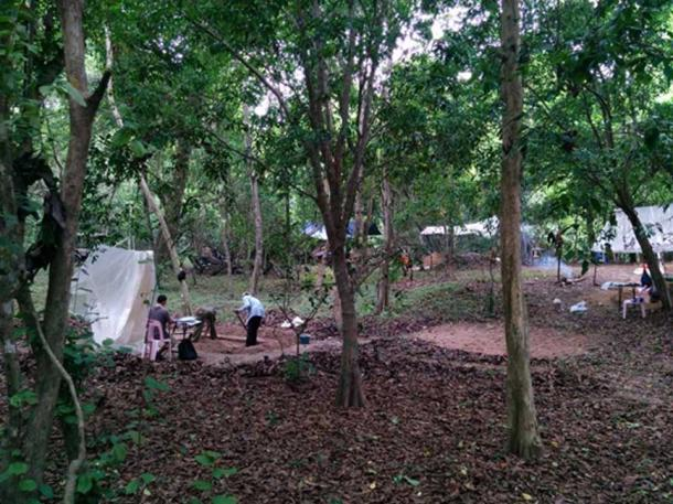 The author's team, excavating occupation mounds surrounding the Angkor Wat temple. Although this area is covered with dense trees now, in the past there would have been houses on these mounds. (Alison Carter / CC BY-SA 4.0)