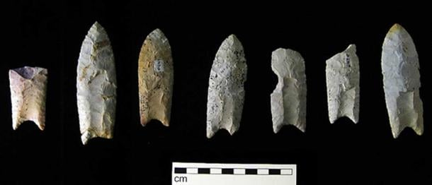 The blades of the Clovis culture had distinctively shaped stone spear points, bifacial and typically fluted on both sides, known as the Clovis point. (Public License).
