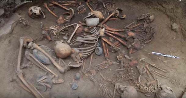 The bodies were arranged in a spiral with interlocking arms.