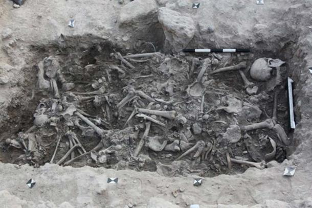 The bones of the Crusaders, from which the Crusaders' DNA was taken, found in a burial pit in Sidon, Lebanon. (Claude Doumet-Serhal / Fair Use)