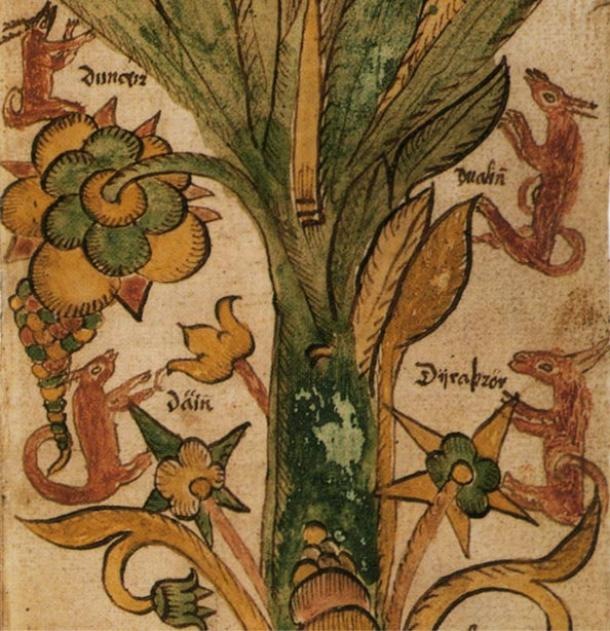 The four stags of Yggdrasill. From 17th century Icelandic manuscript