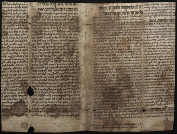 The fragment of text translated from Persian polymath Ibn Sīna's work, flattened out so it can be read. (Independent)