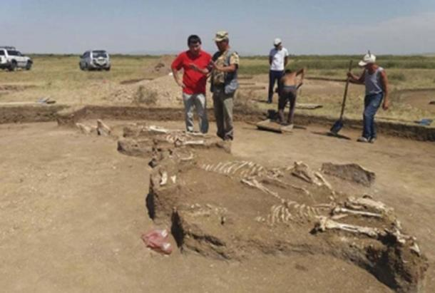 The grave of a priestess was also found nearby. (East2west News)