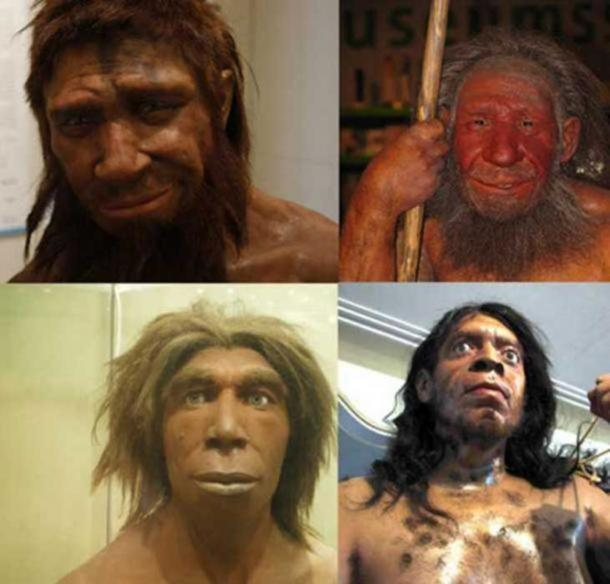"""The homme de Spy (""""Man from Spy"""") (boris doesborg/ CC BY NC SA 2.0 ), and other stereotypical reconstructions of what Neanderthals may have looked like: at the Neanderthal Museum in Mettmann, Germany (Stefan Scheer/Stefanie Krull/ CC BY SA 3.0 ), in the Museum für Naturkunde, Berlin, Germany (כ.אלון/ CC BY SA 3.0 ), and in Zagros Paleolithic Museum, Kermanshah (Rawansari/ CC BY SA 3.0 )"""
