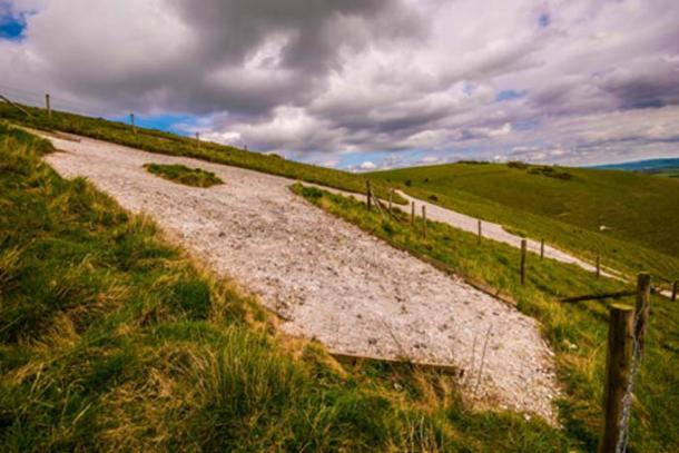 The huge head of the Alton Barnes White Horse. (Steve Simmons UK / Adobe Stock)