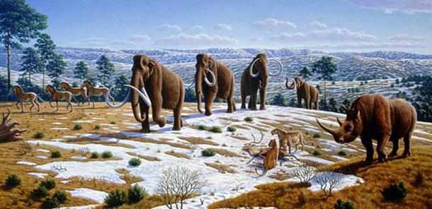 The image depicts a late Pleistocene landscape in northern Spain with woolly mammoths (Mammuthus primigenius), equids, a woolly rhinoceros (Coelodonta antiquitatis), and European cave lions (Panthera leo spelaea) with a reindeer carcass. (Information according to the caption of the same image in Alan Turner (2004) National Geographic Prehistoric Mammals, Washington, D.C. (Mauricio Antón/CC BY 2.5)