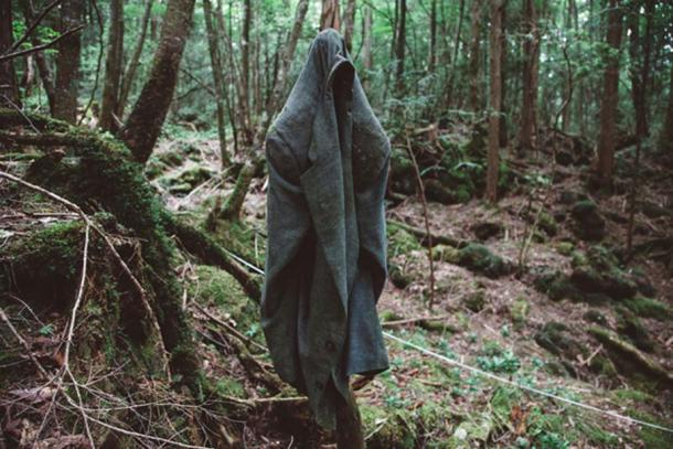 The jacket of a suicide victim hangs on a branch in Aokigahara forest. Credit: Richard Atrero de Guzaman