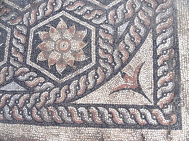 The mosaic included many floral designs. (Ministry of Antiquities / Facebook)
