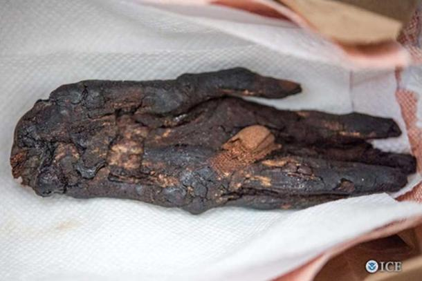 The mummified hand that has now been returned to Egypt.