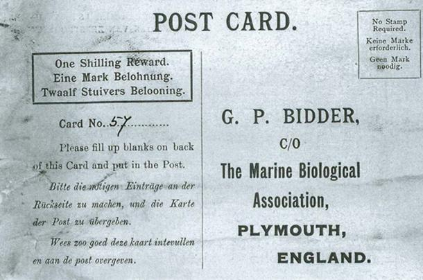 The postcard in Bidder's message in a bottle, the oldest of its kind.