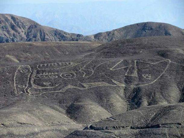 The rediscovered orca geoglyph lies on a desert hillside in the remote Palpa region of southern Peru. (Image: Johny Isla)