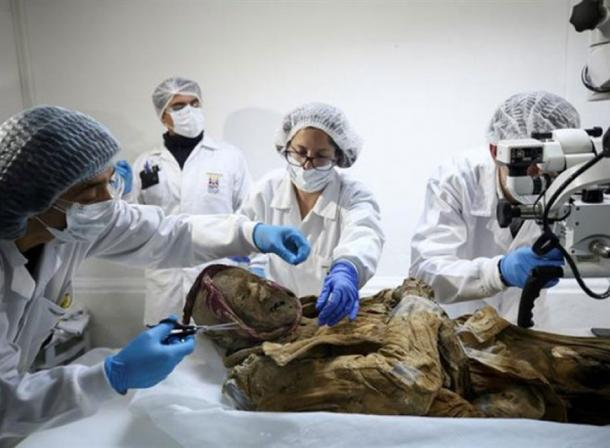 The remains of the mummy of Guano will undergo a series of tests. (elciudadano.com)