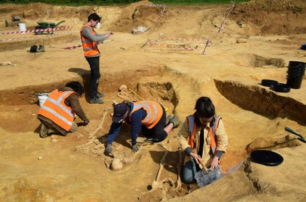 The remains have been removed for analysis (Archaeological Solutions)