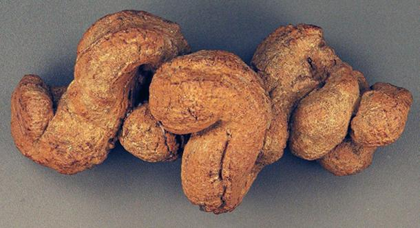 The sample of fossilized coprolite was discovered in the Lower Pecos Canyonlands of southwest Texas. (Natuur12 / CC BY-SA 2.0)