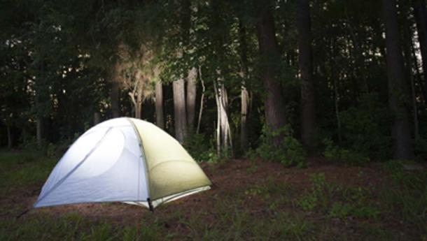 The shooter claimed his campsite was damaged by Bigfoot. (Guy Sagi / Adobe Stock)