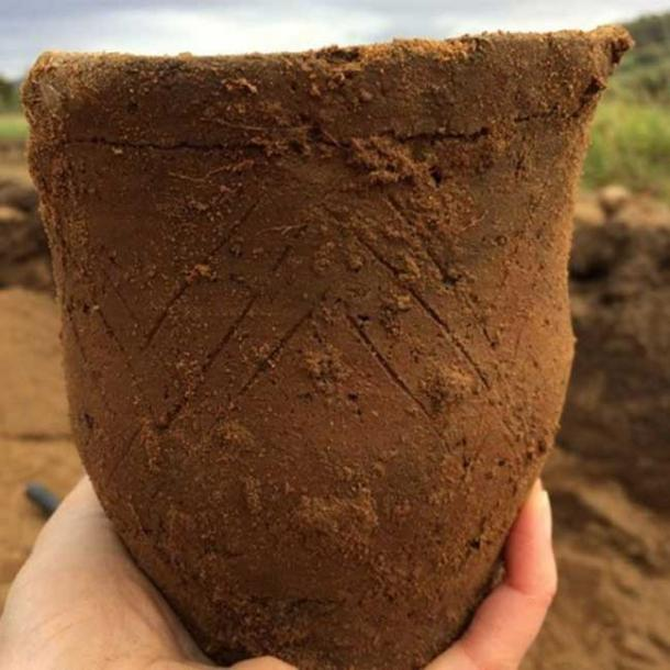 The single Beaker pot found in the latest grave Loch Ness grave. (Image: AOC Archaeology)