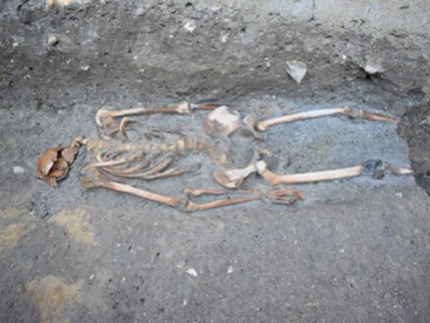 The skeleton discovered during excavations on Torcello Island. (Ca' Foscari University of Venice)