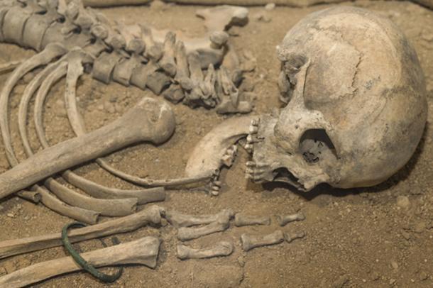 The skeleton of a Neanderthal. (gerasimov174 / Adobe)
