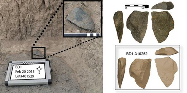 The stone tools were found near the oldest fossil attributed to the genus Homo. (David R. Braun)