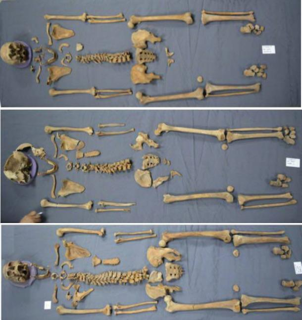 The three skeletons that have been recovered from the sarcophagus are 2 males and a female of varying ages. (Image: Ministry of Antiquities)