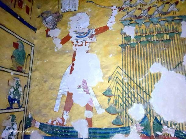 The tomb of Aye (WV23) was vandalized in antiquity: funerary treasures of the king were looted, paintings depicting him were chiseled out, his sarcophagus was smashed to smithereens; and his mummy went missing. It is believed that this crypt was originally intended for Tutankhamun.