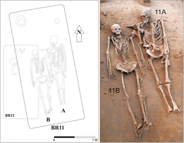 The two skeletons. Their heads were placed towards north. The foot bones on one of the skeletons was missing. (ACB Journal of Anatomy and Cell Biology)