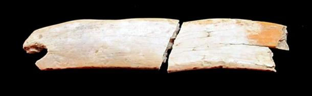 The woolly mammoth ivory tiara. (The Siberian Times)