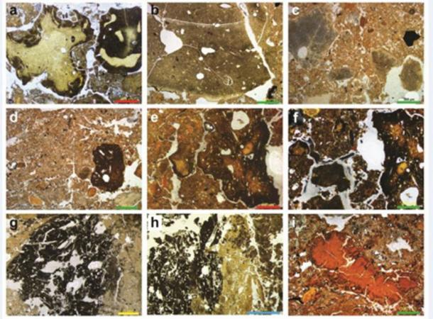 These are profiles of sediment showing a Denisova fossil poo gallery, including hyena, wolf and other unidentified. (Dr. Mike Morley, Flinders University)