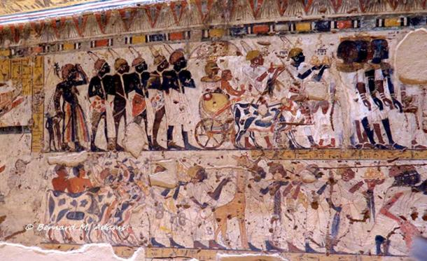 These scenes from the Theban tomb of Amenhotep called Huy, Tutankhamun's viceroy, show Nubian princes bringing tribute for the Pharaoh. The man standing just in front of the cows in the lower register is holding a leopard skin in his hands.