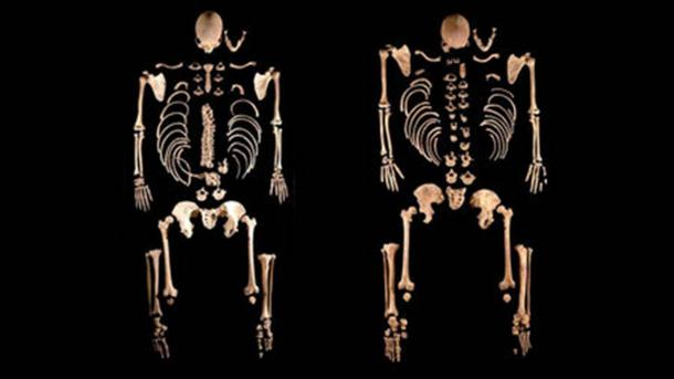 These two skeletons at La Braña in northwest Spain belonged to brothers with dark hair and blue eyes who lived 8000 years ago and were most closely related to hunter-gatherers in Central Europe. (Julio Manuel Vida Encinas)