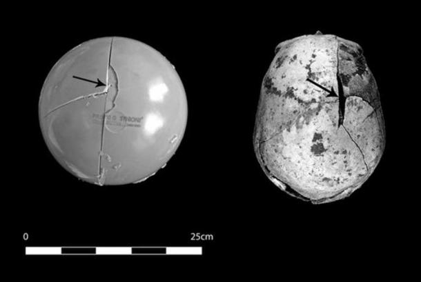 This comparison shows how similar the fractures made on the skull model are to the injuries on the skull of a 35- to 40-year-old man buried at the Neolithic site of Asparn/Schultz.