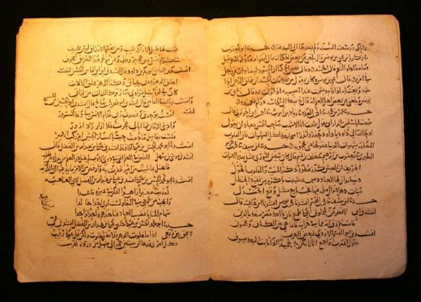 A manuscript of the One Thousand and One Nights